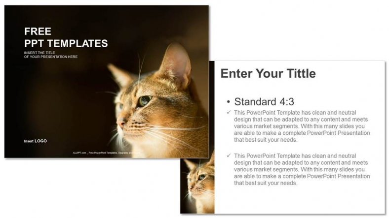 Free Cat Eyes PowerPoint Template