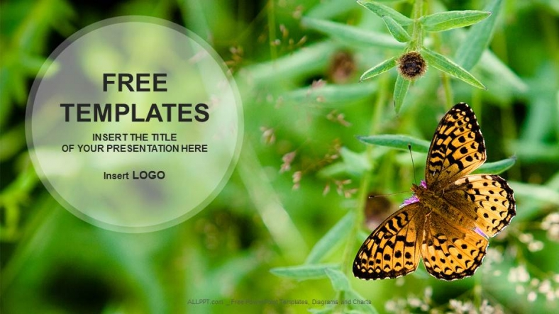 Butterfly on Flower Nature PowerPoint Templates 1