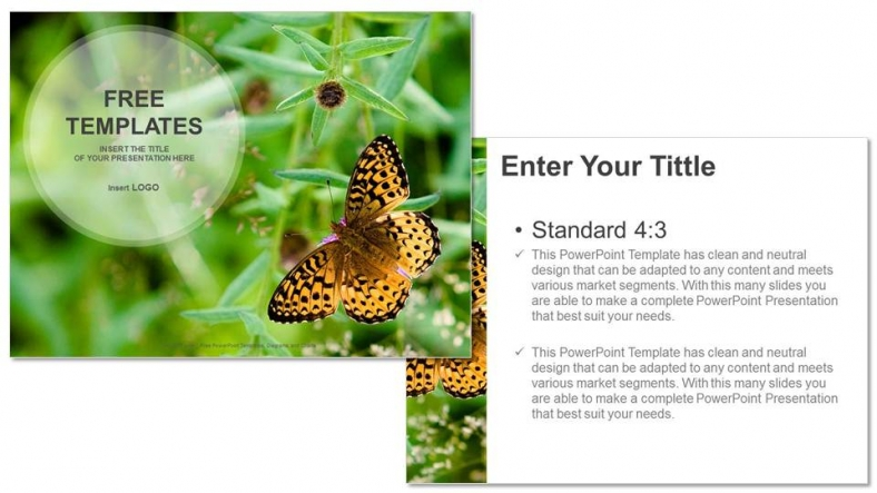 Butterfly-on-Flower-Nature-PowerPoint-Templates (3)
