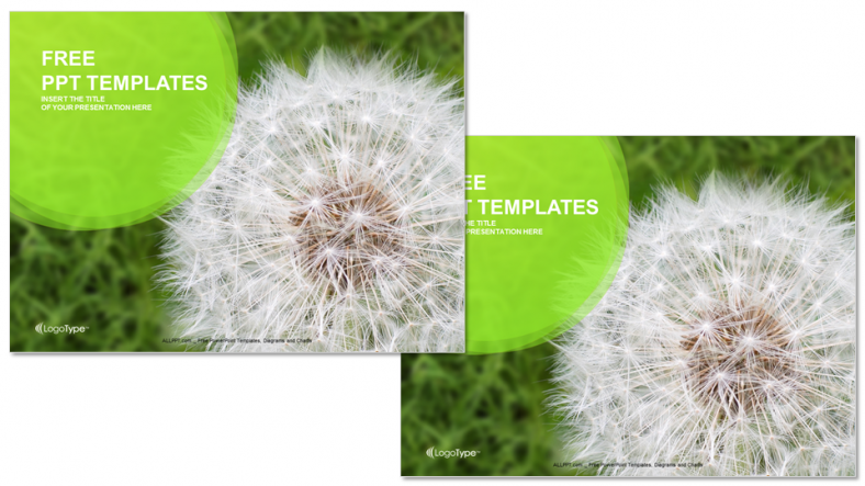 Dandelion-On-Green-Grass-Nature-PPT-Templates (3)