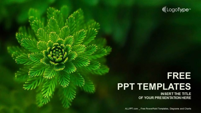 Water Plant Nature PowerPoint Templates 1