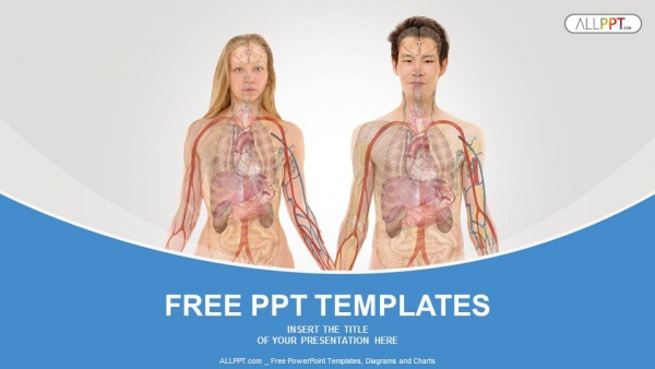 anterior view of human body powerpoint templates