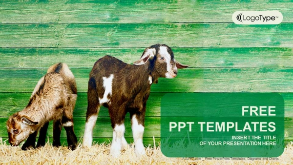 Little goats powerpoint templates for Design of farm pond ppt