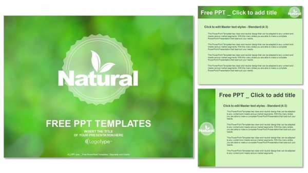 Natural Product Logo Design Point Templates 4